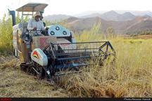 احداث نواحی صنعتی در تمامی دهستانهای کشور