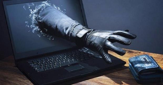 جرائم سایبری در جغتای 105 درصد افزایش یافت