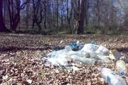 زباله ها و تخریب طبیعت،تهدیدی برای تبدیل زمین های سرسبز به کویر هستند