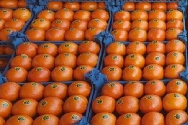 90 تن میوه و شکر ایام عید کهگیلویه تامین شد