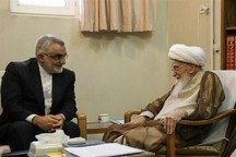 اعضای کمیسیون امنیت ملی مجلس با آیتالله صافیگلپایگانی دیدار کردند