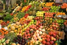 هزینه های جانبی عامل گرانی میوه در همدان است