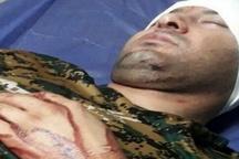 مجروح شدن فعال محیط زیست با سلاح سرد  ارجاع موضوع به شورای تامین دشتستان