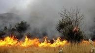 قصه پر غصه آتش سوزی عرصه های طبیعی در کردستان  تعداد حریق ها به 105 فقره رسید