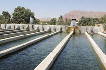 آب حوضچه های غیر مجاز پرورش ماهی در حوضه دز تامین نمی شود
