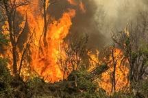 اطفاء آتشسوزی جنگلها و مراتع مسجد سلیمان توسط بالگردهای هوانیروز