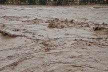 پنج تن در قم از خطر سیلاب نجات یافتند