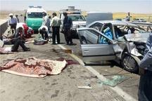 7 کشته و زخمی بر اثر تصادف در محور کنگاور- اسدآباد