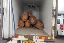 توقیف کامیون حامل 7 اصله گرده بینه قاچاق جنگلی در استان اردبیل