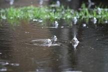 هواشناسی درباره روان آب و آبگرفتگی هشدار داد