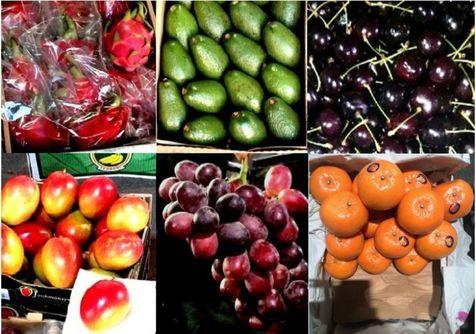 میوههای قاچاق امحاء میشوند!