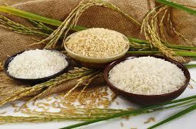 بازار برنج خارجی در قبضه هندیها