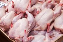 قیمت مرغ گرم در قم 28 هزار ریال کاهش یافت