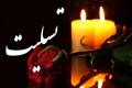 فرهنگیان و خیرین البرزی جان باختن زائران راهیان نور را تسلیت گفتند