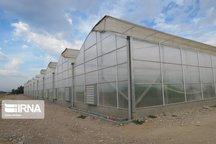۴۵ هکتار از اراضی شهرک گلخانهای نودهک به سرمایهگذاران واگذار شد