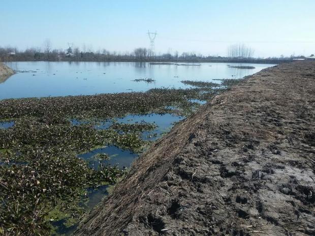 چهار آب بند کشاورزی تا پایان هفته در ماسال بهره برداری می شود