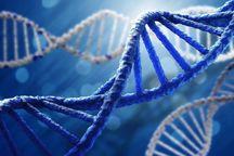 ۲۲ میلیارد ریال کمک هزینه آزمایشهای ژنتیک در خراسان رضوی پرداخت می شود