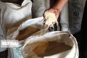 ۳۰ تن برنج مخلوط محلی در مازندران کشف شد