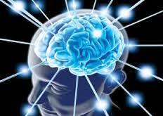 آیا انجام کارهای پیچیده سلامت مغز را در پیری تضمین می کند؟