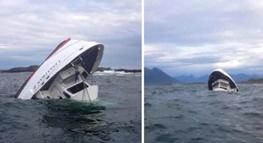 افزایش کشته شده های قایق تماشای نهنگ در کانادا