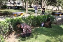 جولان معتادان در پارک بعثت کرمانشاه