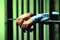 پدر زن، داماد خود را روانه زندان کرد