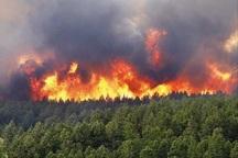 بسیجیان برای مهار آتش به جنگل های آستارا وارد شدند