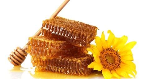 تولید ۷۸ هزار تن عسل در کشور