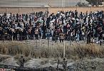 داعش، مانع فرار آوارگان به ترکیه+ تصاویر