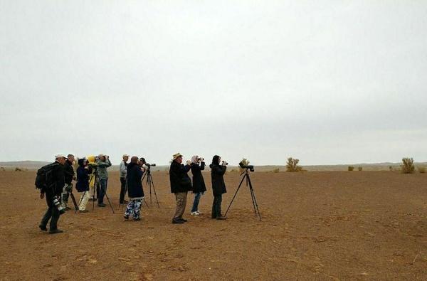 پرنده شناسان سوئدی وارد خوزستان شدند
