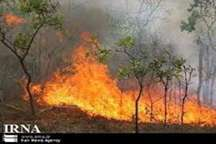 سالانه 2 هزار هکتار از جنگل های لرستان دچار حریق می شود