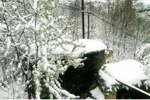 دمای هوای برخی نقاط خراسان شمالی به زیر صفر رسید