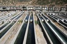 پروژه پرورش ماهیان گرم آبی در لرستان ایجاد میشود