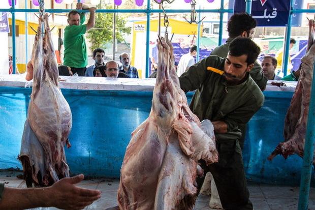 265 تن گوشت قرمز در ماکو تولید شد