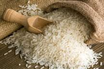 ارزش اقتصادی محصول برنج در سیروان 380 میلیارد ریال است