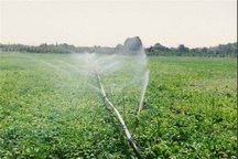 نسبت اجرای سیستم های آبیاری تحت فشار به زمین های آبی در کهگیلویه و بویراحمد بالاتر از میانگین کشور است.