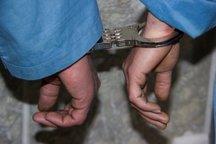شکارچی غیر مجاز در فیروزکوه دستگیر شد