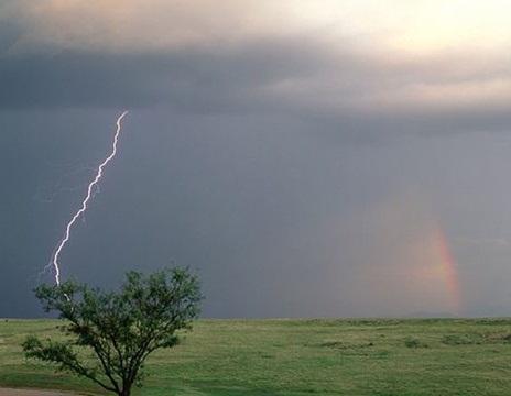 پیشبینی وزش باد، رگبار و رعد و برق در کشور