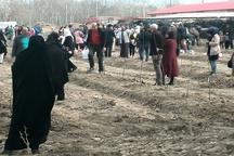 درهای باغ سیب کرج 13 فروردین ماه 97 روی مردم باز است