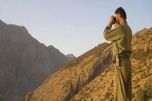 هر جنگلبان ایلامی از پنج هزار هکتار جنگل محافظت می کند