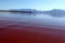 سطح دریاچه ارومیه تقریباً تثبیت شده است