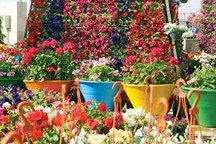 نمایشگاه گل و گیاه و جهیزیه در قائمشهر گشایش یافت