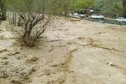 البرزی ها از ورود به حاشیه رودخانه ها پرهیز کنند