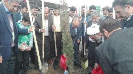 معاون استاندار کرمانشاه:توسعه بدون توجه به حفظ منابع طبیعی پایدار نخواهد بود