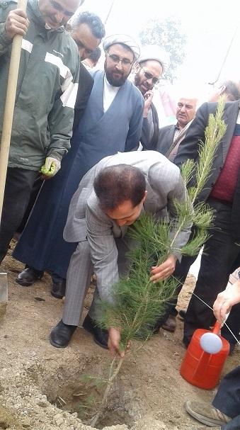 درختکاری و حفاظت از محیط زیست باید به فرهنگ تبدیل شود