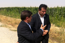 حذف واسطه ها از تولید تا مصرف محصولات کشاورزیِ گواهی شده