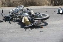 72درصد فوتی های حوادث رانندگی بوشهر موتورسیکلت سوران هستند