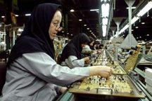 20 درصد شاغلان بیمه شده استان کرمان بانوان هستند