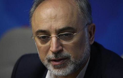 ابراز نگرانی صالحی از اخراج ایرانیان در تماس تلفنی با وزیر خارجه امارات