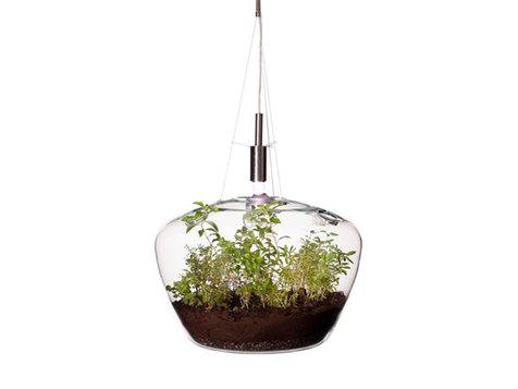 گلخانه شیشهای درست کنید+فیلم